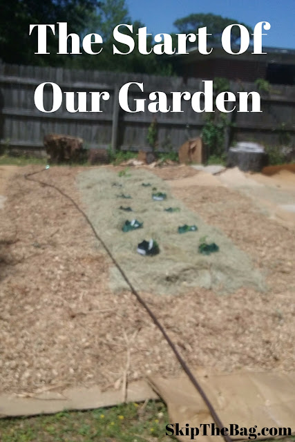How we got our garden started with cardboard and mulch.