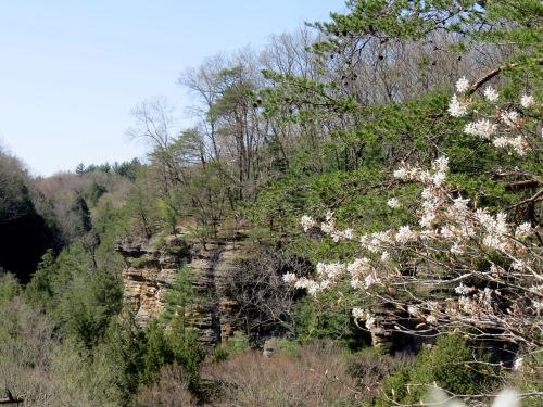 Conkle's Hollow, Hocking Hills, Ohio