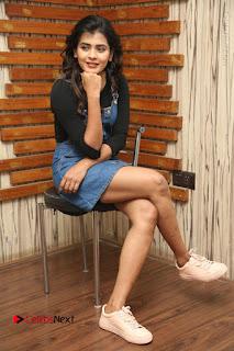 Actress Hebah Patel Stills at Nanna Nenu Naa Boyfriends Movie Interview  0110.JPG