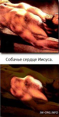 Собачье сердце Иисуса