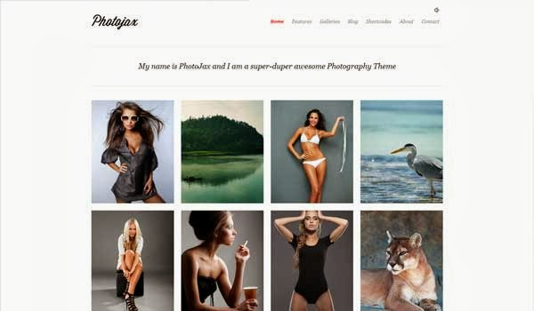 Photojax-photography-theme