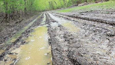 Inglorious Mud