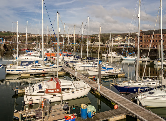 Photo of another view of Whitehaven Marina