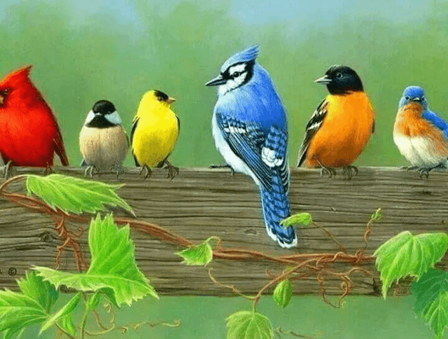 Android Mobile I Phone Sparrows HD Wallpapers