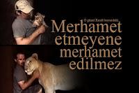 Yavru aslana merhamet eden bir adamın, aslan büyüdüğünde aslandan merhamet görmesi