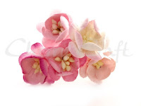 https://cherrycraft.pl/pl/p/Kwiat-wisni-MIX-ROZOWY-5-szt.-Wild-Orchid-Crafts-/2639