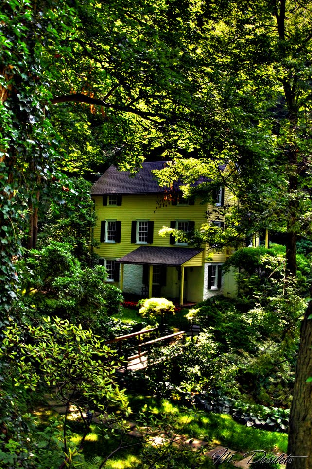Hollys Hill Hidden Forest House Burlington Vermont
