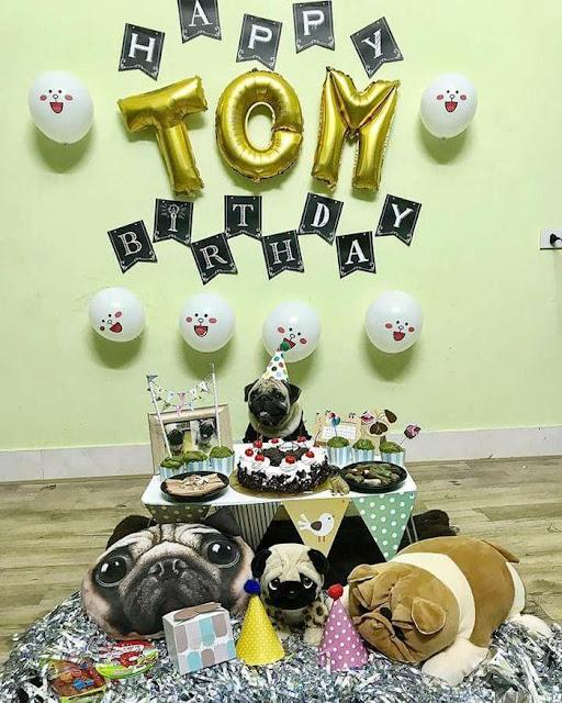 Tổ chức sinh nhật hoành tráng cho Boss