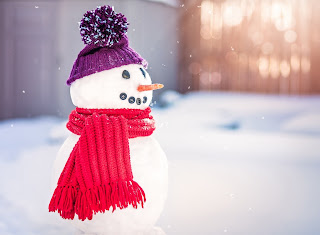 perfect-christmas-snowman-decoration-in-red-and-purple-scarf-carrot-nose.jpg