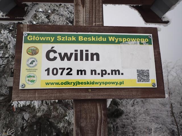 Ćwilin (1072 m.n.p.m.), drugi najwyższy szczyt Beskidu Wyspowego
