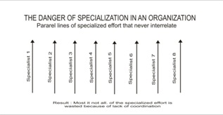 The Danger of Specialization in a Organization