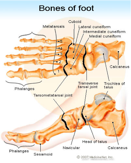 Anne Reflexology: How to help foot pain