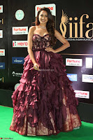 Prajna Jaiswal in a Beautiful Designer Sleeveless Shoulder less Gown at IIFA Utsavam Awards 2017  Day 2  Exclusive 11.JPG