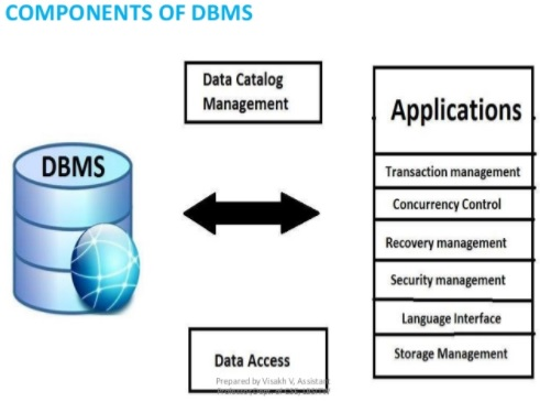 DBMS Principles for Dummies - ...