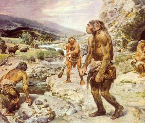 Evo and Proud: Were Neanderthals furry?