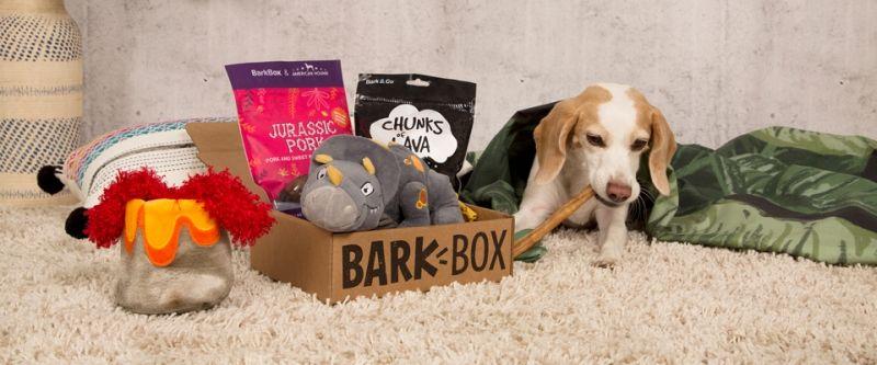 Best Pets Subscription Boxes - Bark Box