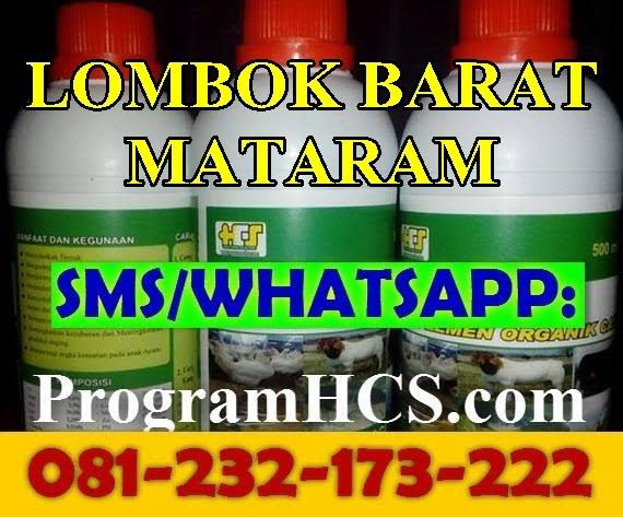 Jual SOC HCS Lombok Barat Mataram