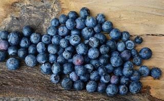 blueberry-www.healthnote25.com