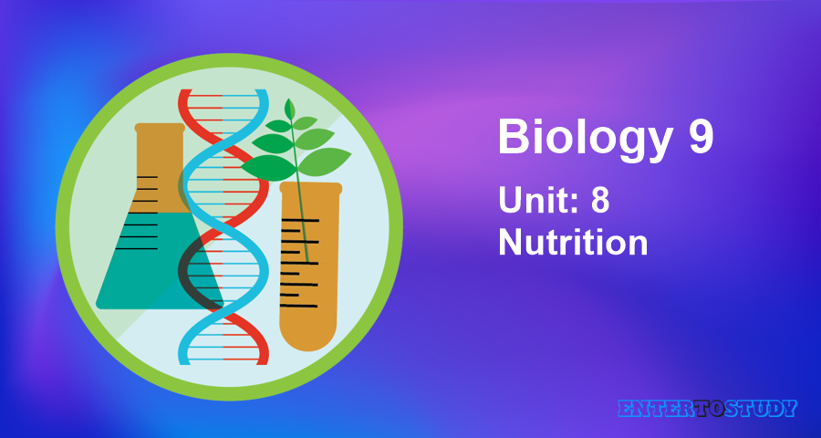 KIPS 9th Class Biology Notes Unit 8: Nutrition