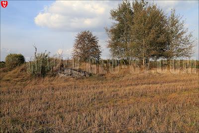 АПК №6. Руины
