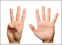 Bagian badan yg kita gunakan utk memegang benda yakni   Soal K13 Kelas 1 SD Tema 1 Diriku Subtema 2 Tubuhku Dan Kunci Jawaban