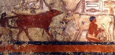 8,000年前の人間