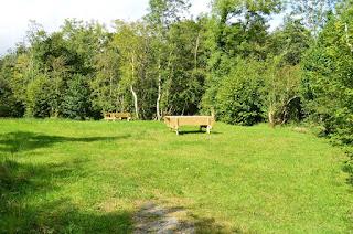 Verdant picnic area Rossinver Leitrim