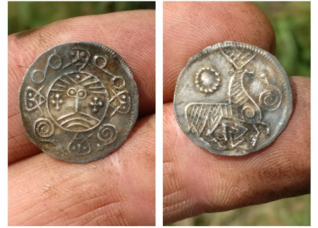 Over 200 Viking coins found in Danish wetlands