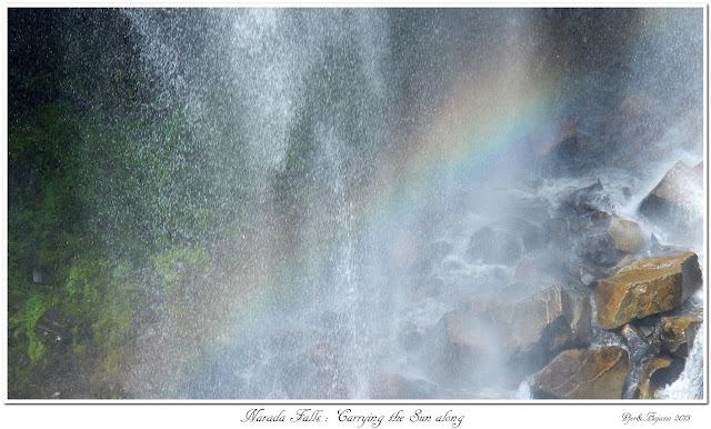 Narada Falls: Carrying the Sun along