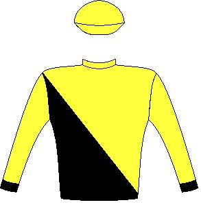 Tilbury Fort - Silks - Owner: Messrs M A Currie, W H Jacobs, S Mathen, E C Van Niekerk, Craig Zoghby, Sean Tarry Racing C.C. (Nom : Mr S G Tarry) & Mrs B M A Lahoud - Colours: Black and yellow halved diagonally, yellow sleeves, black cuffs, yellow cap