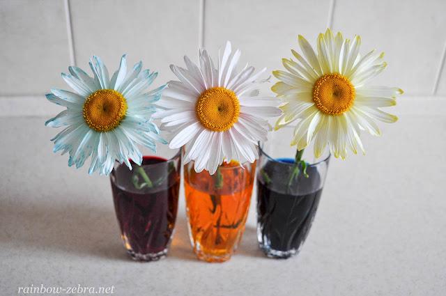 Экспериментируем со смешением цветов