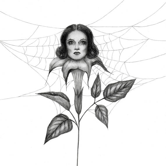 dark art, spider web, datura