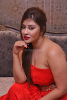 Payal Ghosh Looks Stunning in Red Half Shoulder Gown 039.JPG