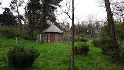 Pozo. Quinta de Torre Arias
