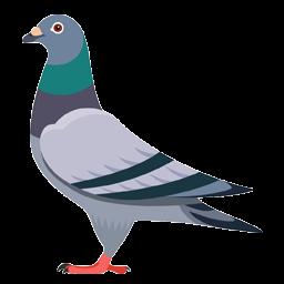 logo burung merpati kolong