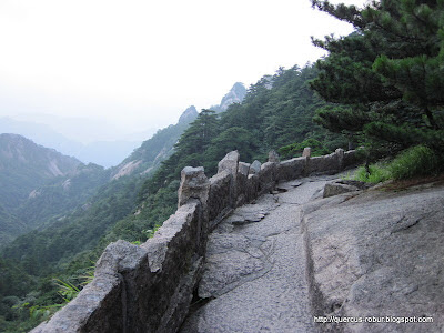 Huanshan - Yellow Mountains