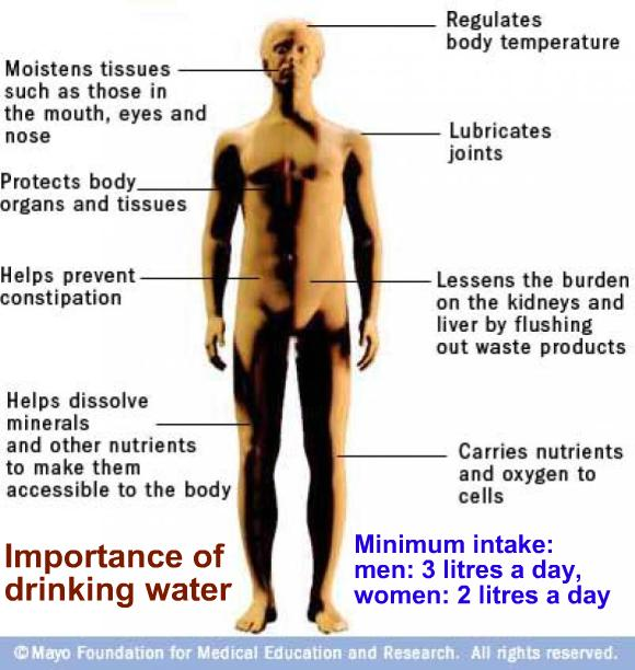 Interesting. You adult dehydration symptom are all