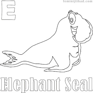 E For Elephant Seal Alphabet Coloring Pages