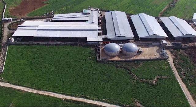 Las grandes empresas del Ibex miran al agro