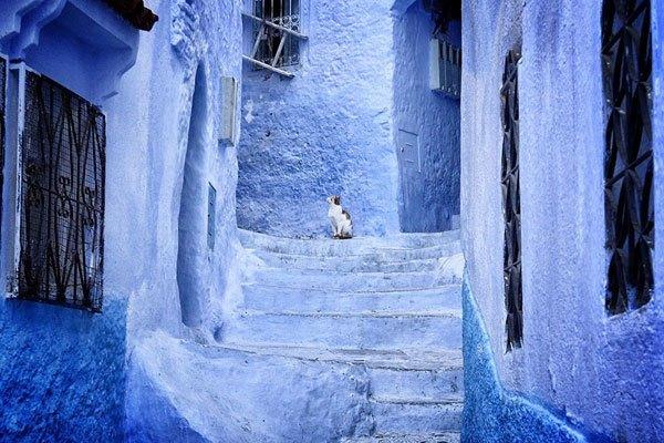 """جولة في مدينة شفشاون ( الشاون ) المغربية """" الحلم الأزرق """" بالصور"""