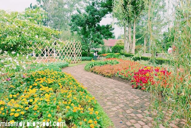 rute ke taman bunga nusantara
