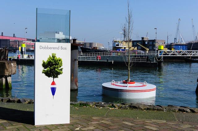 Atasi Krisis Lahan, Rotterdam Bangun Hutan di Atas Laut