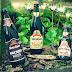SteinHaus: A Primeira cervejaria orgânica do Brasil