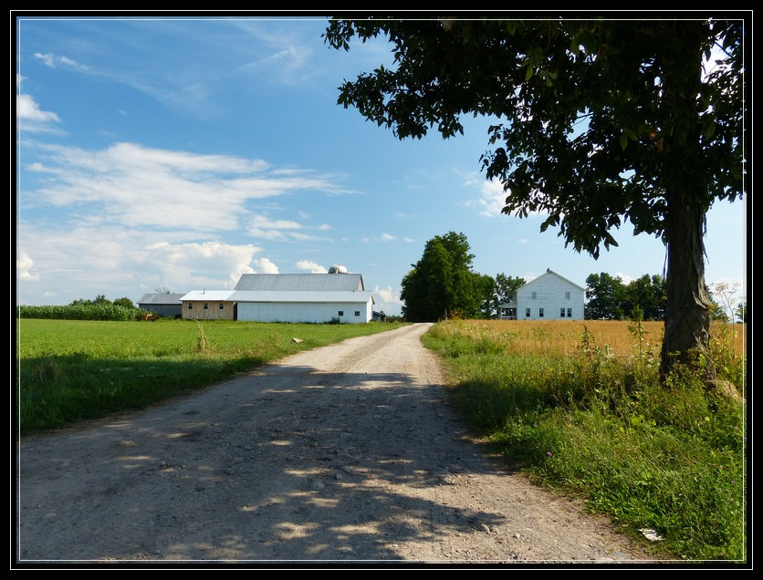 Amish Homestead