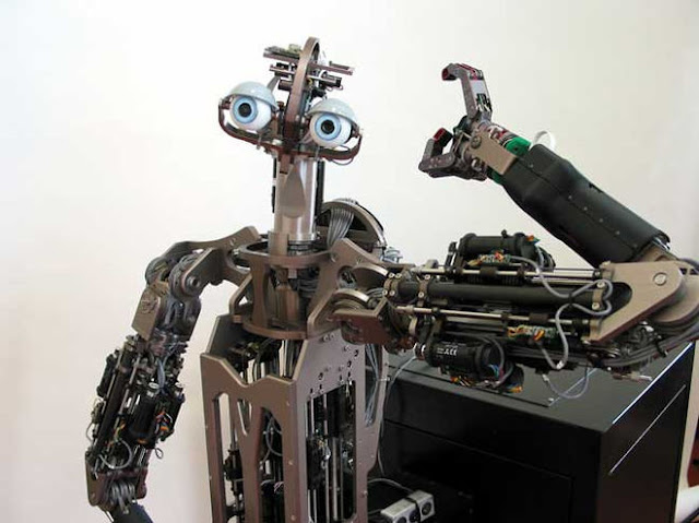 Domo el robot