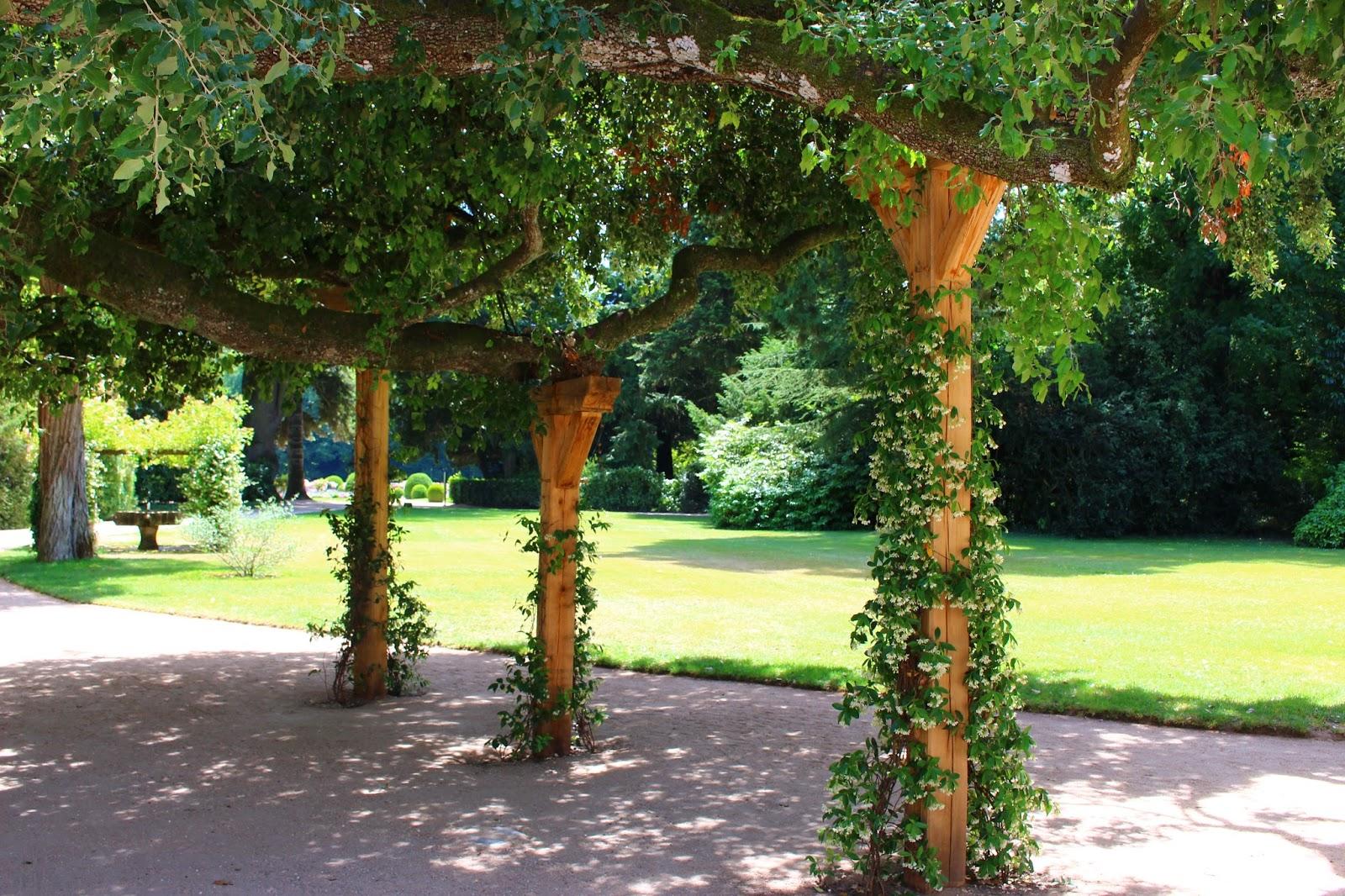 Emejing Olivier Jardin Du Pic Vert Images - House Design ...