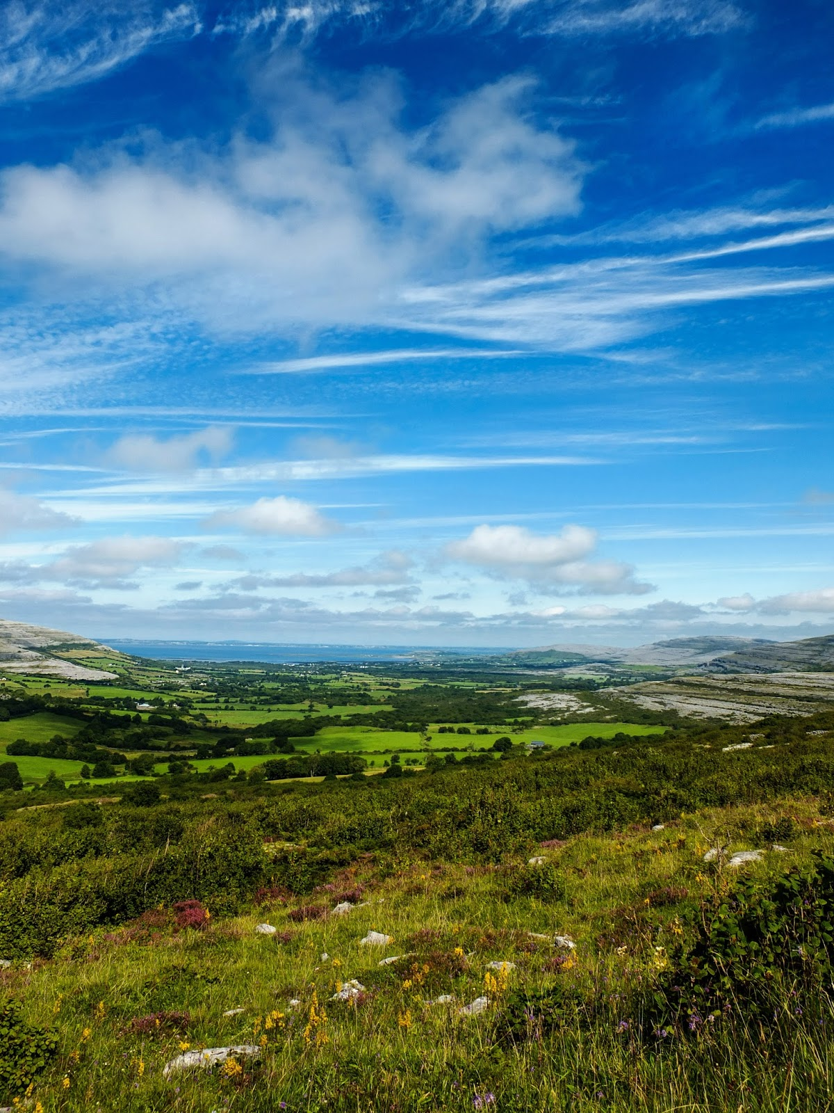 Green fields in the Burren on a sunny day in Co.Clare.