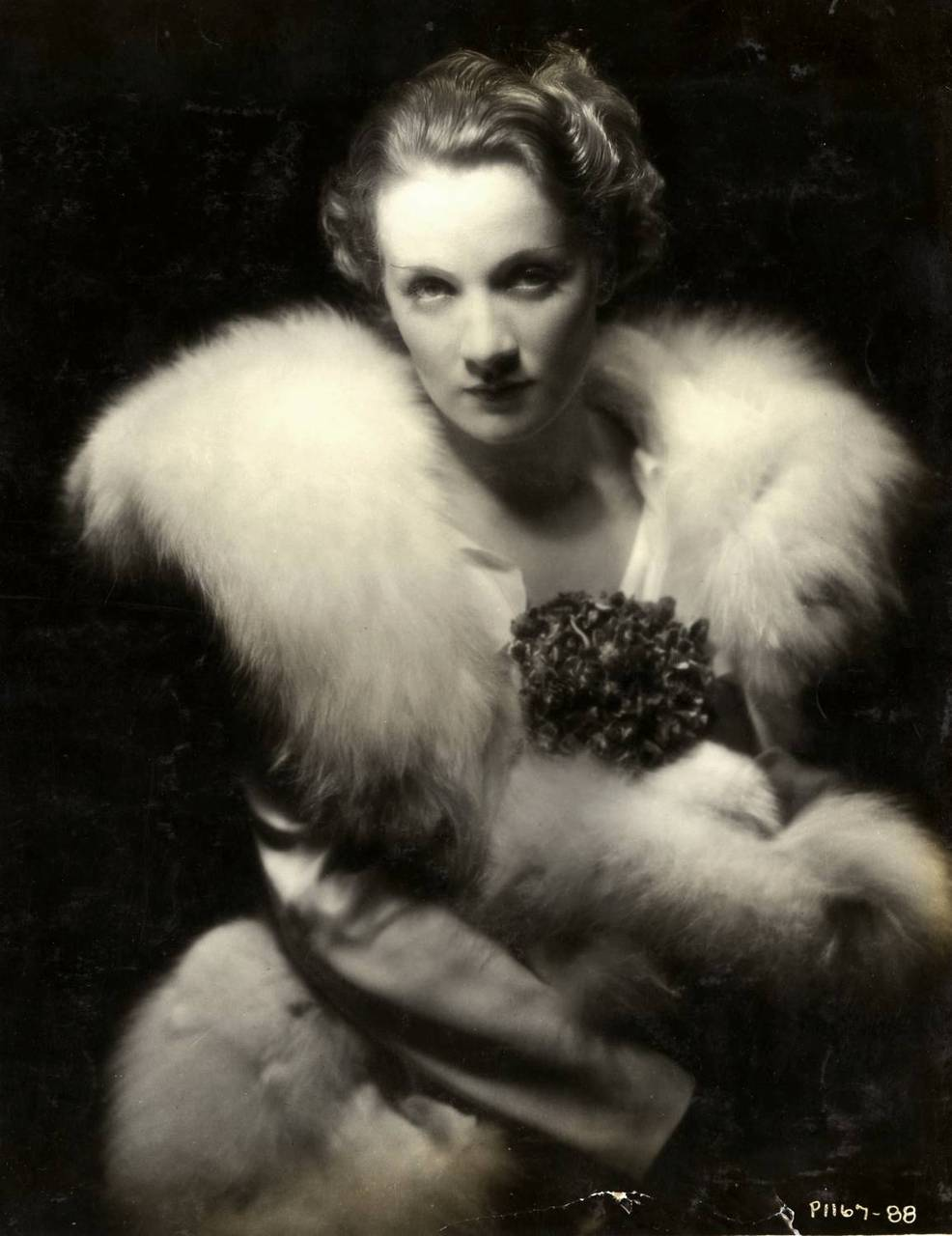 Marlene Dietrich Annex2: Rag Trade Sisters : Black And White And Dramatic All Over