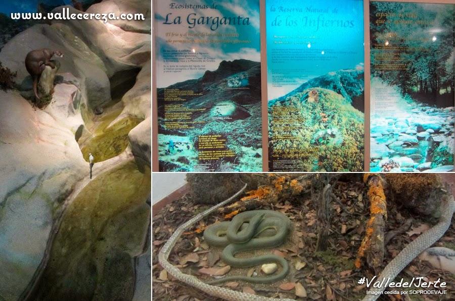 Centro de Interpretación de la Reserva Natural Garganta de los Infiernos. Valle del Jerte