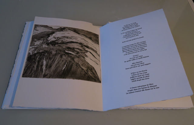Livre d'artiste Serge Marzin et Brigitte Maillard